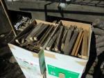 H261025サツマイモ掘り準備 (4)