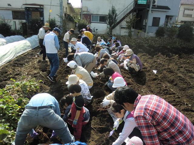 H261026サツマイモ掘り及び炊き出し訓練 (26)