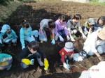H261026サツマイモ掘り及び炊き出し訓練 (30)