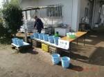 H261026サツマイモ掘り及び炊き出し訓練 (5)