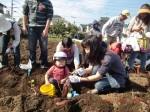 H261026サツマイモ掘り及び炊き出し訓練 (61)