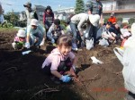 H261026サツマイモ掘り及び炊き出し訓練 (64)