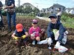 H261026サツマイモ掘り2 (31)