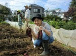 H261026サツマイモ掘り2 (52)