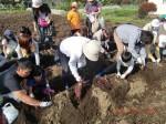 H261026サツマイモ掘り及び炊き出し訓練 (28)