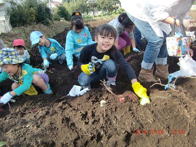 H261026サツマイモ掘り及び炊き出し訓練 (35)