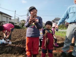 H261026サツマイモ掘り及び炊き出し訓練 (39)
