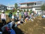 H261026サツマイモ掘り及び炊き出し訓練 (50)