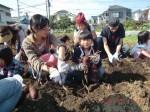 H261026サツマイモ掘り及び炊き出し訓練 (59)