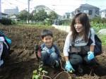 H261026サツマイモ掘り2 (13)
