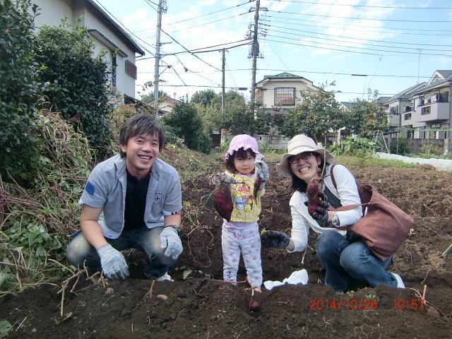 H261026サツマイモ掘り2 (29)