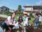 H261026サツマイモ掘り2 (35)