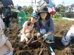 H261026サツマイモ掘り2 (46)