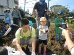 H261026サツマイモ掘り2 (47)