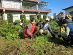 H261116_野島農園 (6)