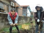 H261221ジャガイモ・サトイモ収穫 (14)