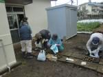 H261221ジャガイモ・サトイモ収穫 (38)
