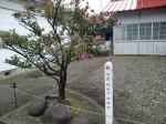 H270122自治会研修旅行 (61)