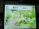 H261124大仁農場交流会 (21)