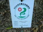 H261124大仁農場交流会 (67)