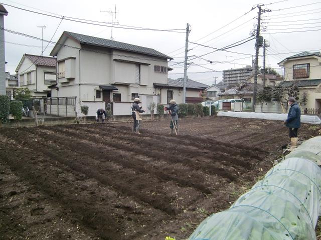 H270303ジャガイモの種植え (1)