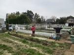 H270303ジャガイモの種植え (9)