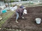 H270309ジャガイモ種植え (12)