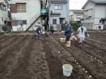 H270309ジャガイモ種植え (22)