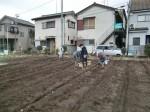 H270309ジャガイモ種植え (2)