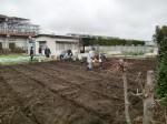 H270309ジャガイモ種植え (25)