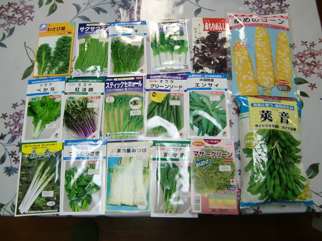 H270314野島農園種まき (1)