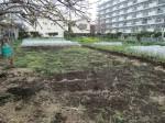 H270410野島農園の様子 (16)