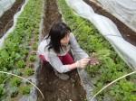 H270412野島農園 (28)