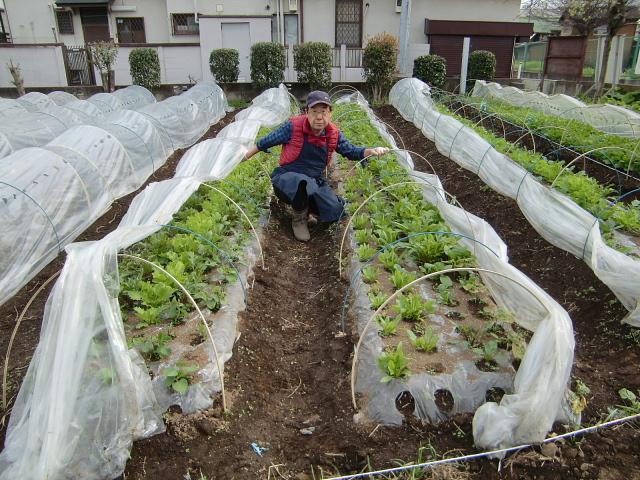 H270412野島農園 (3)