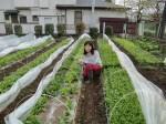 H270412野島農園 (4)