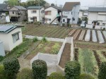 H270418野島農園 (16)