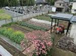 H270418野島農園 (17)
