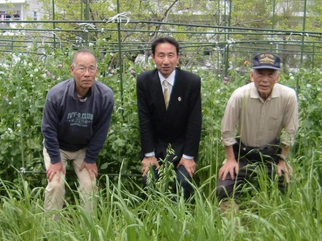 H270419野島農園 (1)