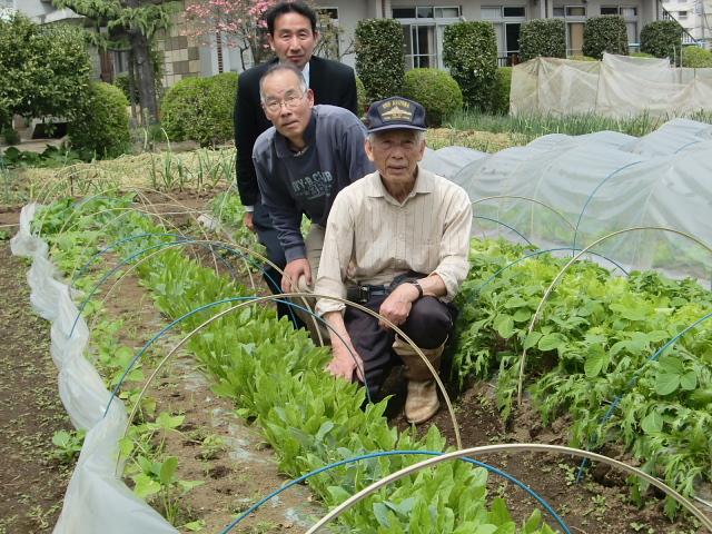 H270419野島農園 (3)