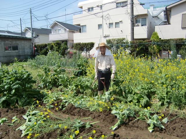 H270424野島農園 (2)