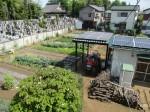 H270502野島農園 (22)