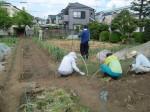 H270503野島農園 (11)