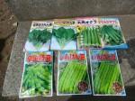 H270503野島農園 (9)