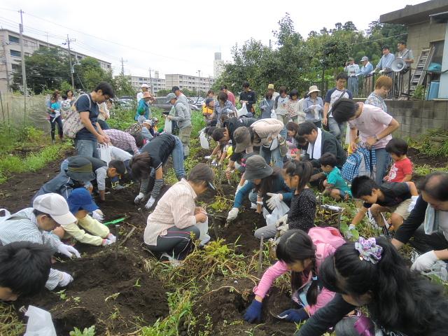 H240721親子農業体験ジャガイモ掘り (2)