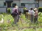 H270521いやし収穫体験・台湾公立TV取材 (10)
