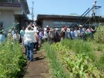 H270521いやし収穫体験・台湾公立TV取材 (2)