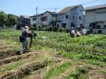 H270521いやし収穫体験・台湾公立TV取材 (9)