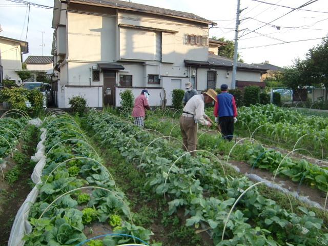 H270524農作業 (12)