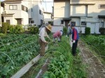 H270524農作業 (13)