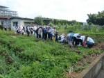 H270720親子農業体験ジャガイモ掘り (15)